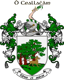 CALLAGHAN family crest